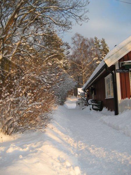 Vinter morgon