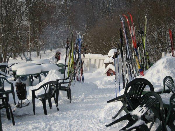 Många skidor denna dag