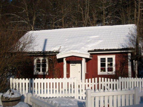 Vintermorgon 2012