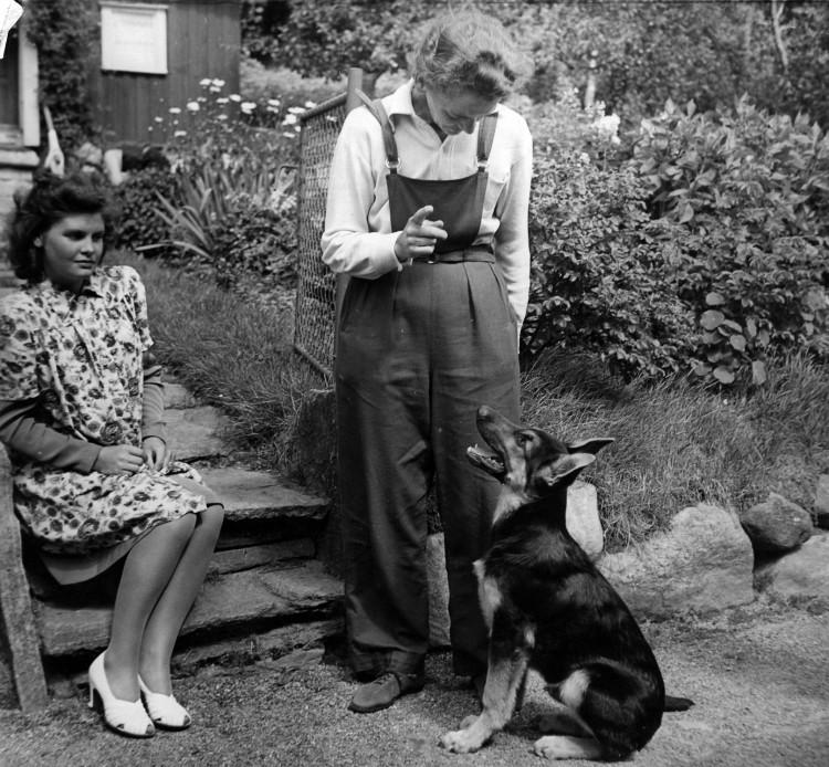 Ulla, Atti och Lobo år 1945